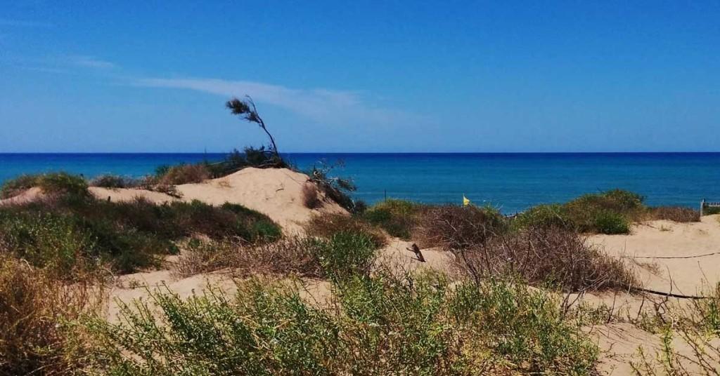 riserva_spiaggia_dune_duna_randello_ragusa_punta_braccetto_scoglitti