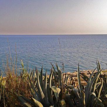 Punta Corvo e Costa di Carro